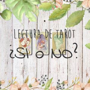 Lectura de Tarot ¿SI o NO?